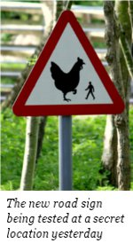 chicken warning sign