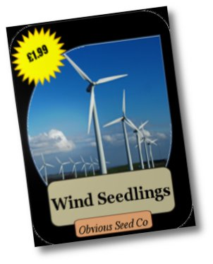 Wind Seedlings