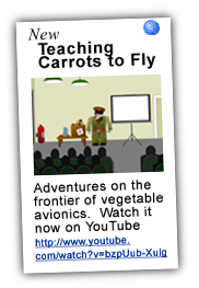 YouTube: Teaching Carrots to Fly